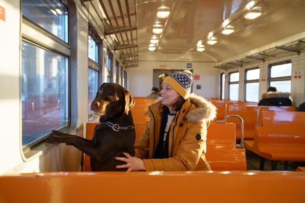Comment voyager en train avec son chien ?